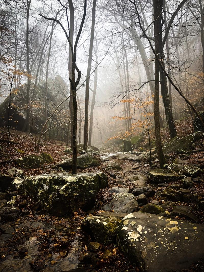 Onah - Foresta del Maniero