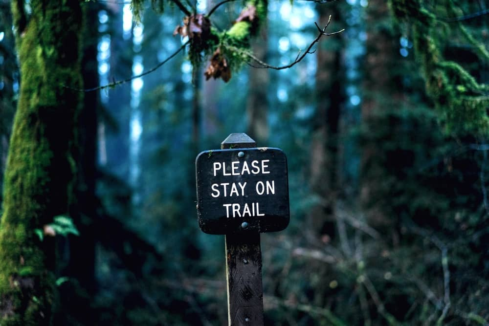 "Me lo prometti? - Cartello nel bosco ""Stay on trail!"" - Photo by Dan Gold"